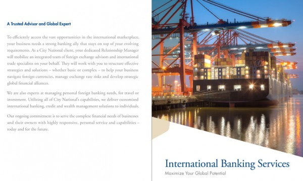 City National International Capabilities Brochure-1